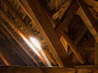 Crawl Space Cleaning Services | Attic Cleaning Palo Alto, CA